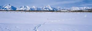 A moose trail in deep snow before the impressive Teton Range in northwest Wyoming